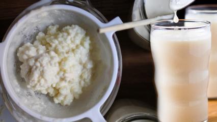 Kefir nedir Kefirin faydaları neler Kefir nasıl kullanılır Kefir suyu içmek